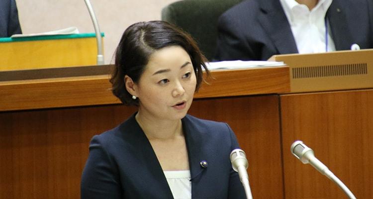 安藤じゅん子2017年9月議会一般質問