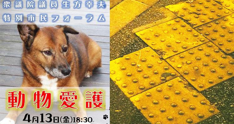 動物愛護についての市民フォーラムを開催