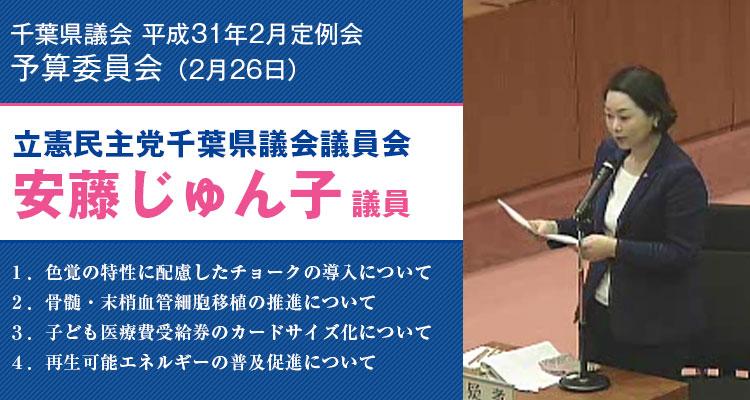 2019年2月26日千葉県議会予算委員会にて質問する安藤じゅん子県議