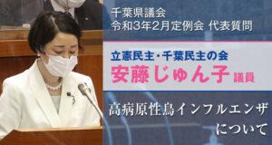 千葉県議会2月議会代表質問に登壇する安藤じゅん子 高病原性鳥インフルエンザについて